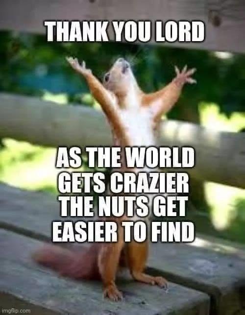 Crazier World